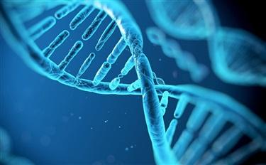 基因检测定制护肤品 私人定制护肤的最高造诣