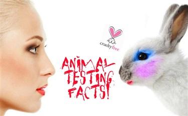 据爆料国内某品牌将公开禁止动物实验 是谁这么牛?