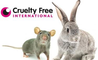 欧洲举办禁止化妆品动物实验五周年今年活动