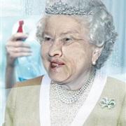 Nikol窗户玻璃清洁湿巾广告