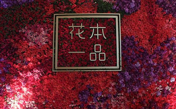 代理女王聂小曼的自创品牌花本一品,抢占1000亿植物护肤市场