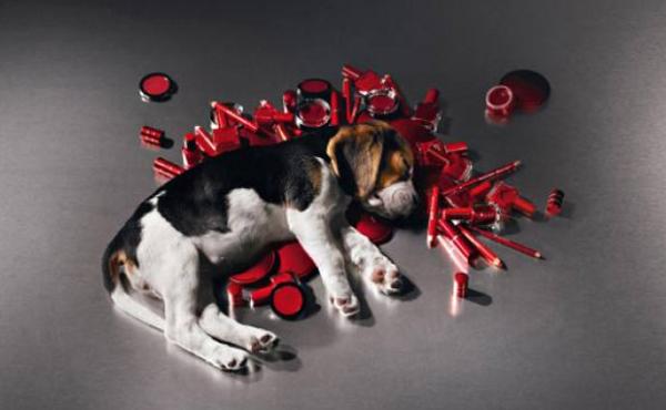 The Body Shop和Cruelty Free International呼吁终止动物实验