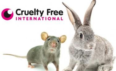 英政府脱欧以后将坚持禁止动物实验政策