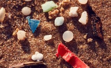 """""""塑料微粒""""禁令影響有幾何?來聽聽這幾位專家怎么說"""