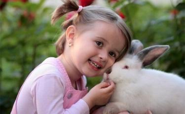 宝洁联手动物保护组织 HSI 推动个护产品反动物测试倡议