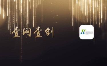 壹网壹创上市后首发年报:2019年净利增长34.71%,线上分销营收翻一番