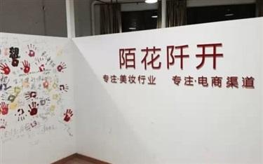 【网聚天下】王博,为线上美业铺设花的芬芳