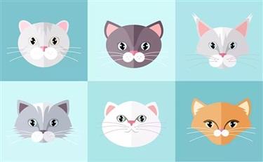 吸猫=吸金 化妆品行业在猫次元经济中的新体验