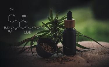 新兴大麻素进入大众视线,这些新品牌注意到了