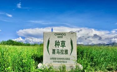 种草喜马拉雅!自然堂在5128米开创首个公益线上直播