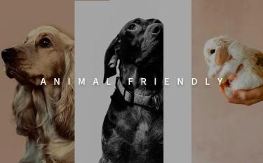 """""""动物友好型""""产品占领国际市场,国内是否将迎来新春天?"""